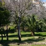 parco Viviani